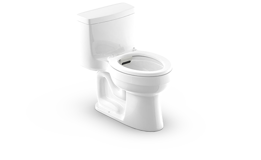 AQO Toilet Device